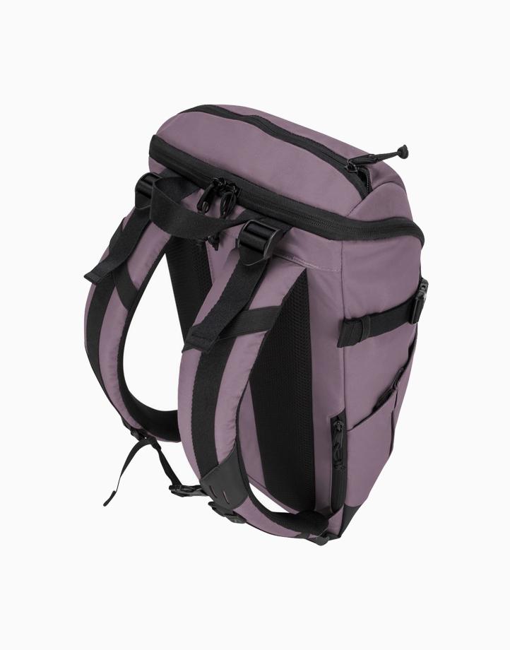 "14"" Sol-Lite Laptop Backpack by Targus   Rice Purple"