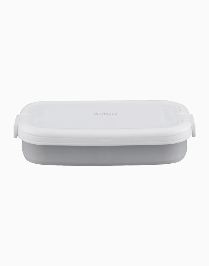 UV Portable Sterilizer by Euroo