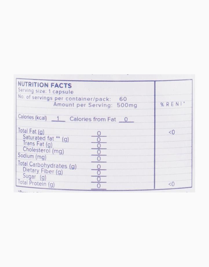 Dfystress (60 capsules) by SOZO Natural