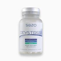 Dfystress by SOZO Natural