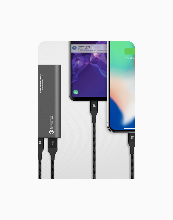 Powertank-10 10000mAh Metallic Power Bank with 18W USB-C (with PD & QC3.0) and Quick Charge 3.0 Port - Grey by Promate