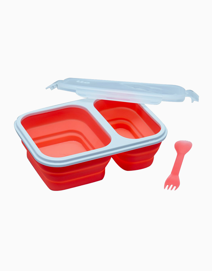 ilo Silicone Lunch Kit by K Onstyle