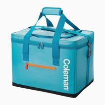 25L Iceberg Insulated Bag by Coleman
