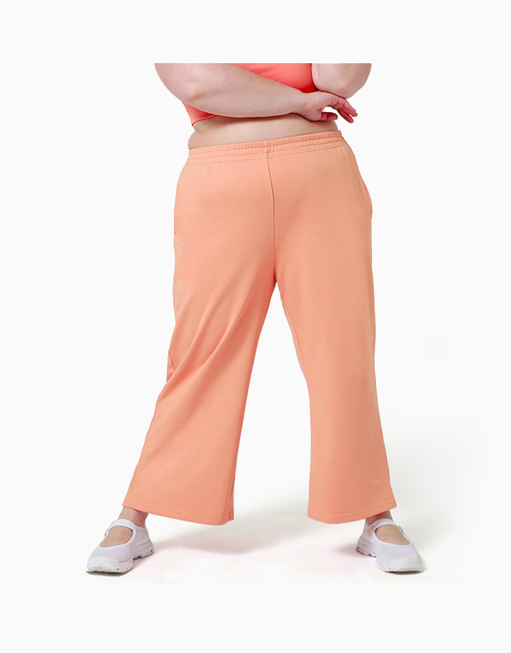 Comfort Zone Pant in OJ by Recess |