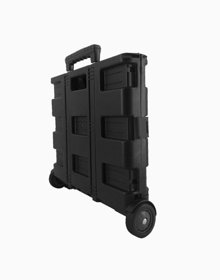 Home 2-Wheel Folding Trolley by True Vision