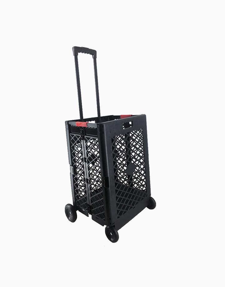 Home 4-Wheel Folding Trolley by True Vision