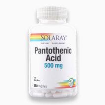 Pantothenic Acid (500mg, 250 VegCaps) by Solaray