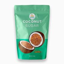 Raw Bites Coconut Sugar (200g) by Raw Bites PH
