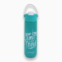 Waylon Green Double Wall Stainless Steel Water Bottle w/ Powder Coating in Gift box (700ml) by Omega Houseware