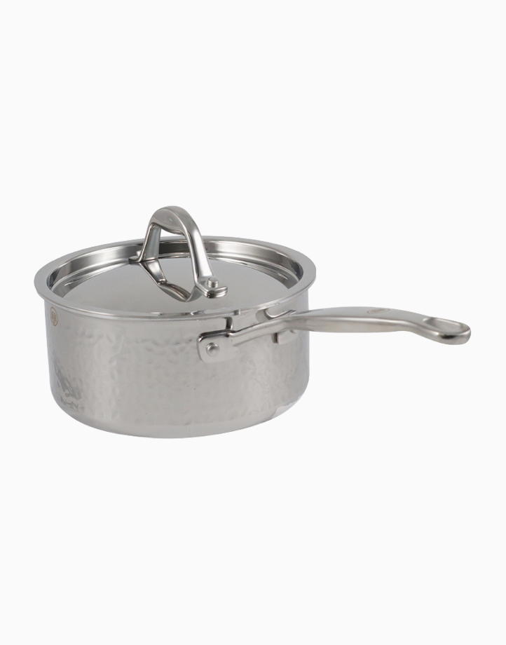 Stern Stainless Steel Saute Pan Tri-Ply Body with Lid (18cm) by Carl Schmidt Sohn