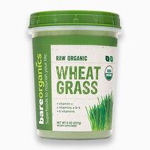 Raw Organic Wheatgrass Powder (227g) by BareOrganics