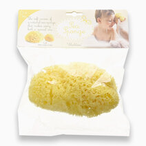 Honeycomb Bath Sponge Large No. 14 by Bellini