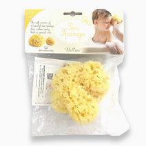 Honeycomb Bath Sponge Small No. 10 by Bellini