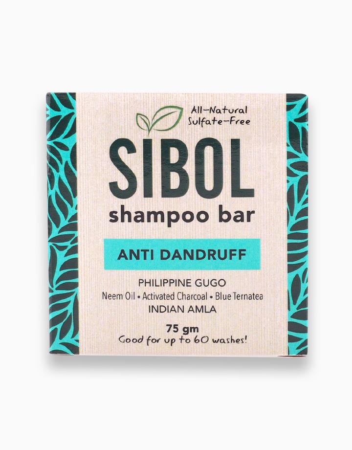 Anti Dandruff Shampoo Bar by Sibol