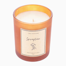 Springtime Soy Candle (6oz) by Calyx Life & Home