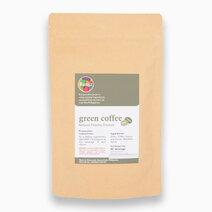 Natural Green Coffee Powder by Bunga