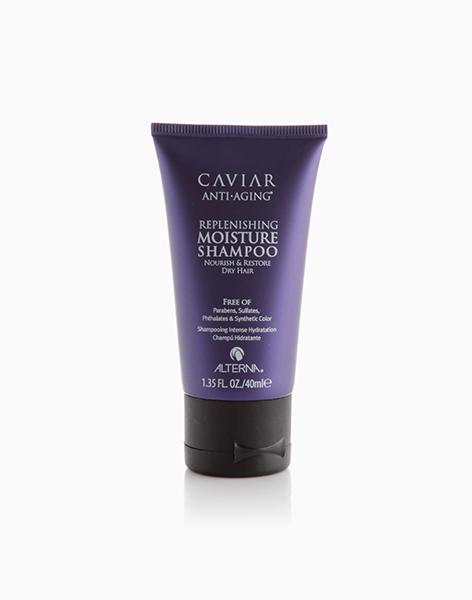 Caviar Anti-Aging Replenishing Moisture Shampoo (40ml) by Alterna