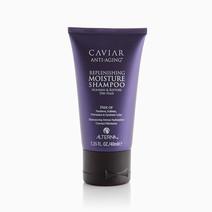 Caviar Moisture Shampoo 40ml by Alterna