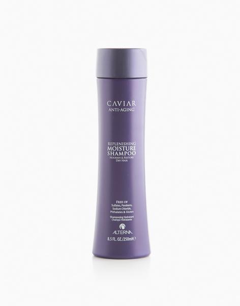 Caviar Moisture Shampoo (250ml) by Alterna