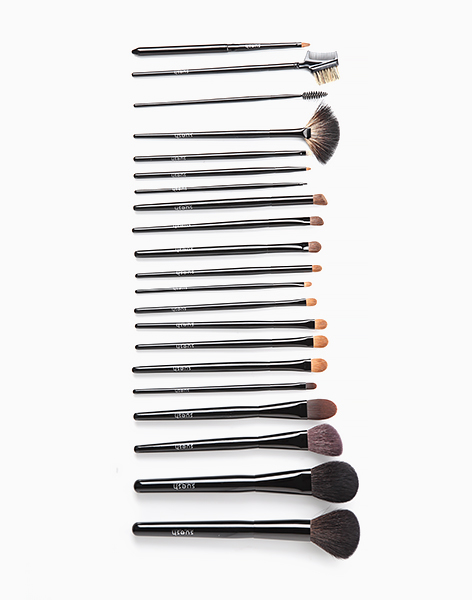 Pro Advance 21-Piece Makeup Brush Set by Suesh