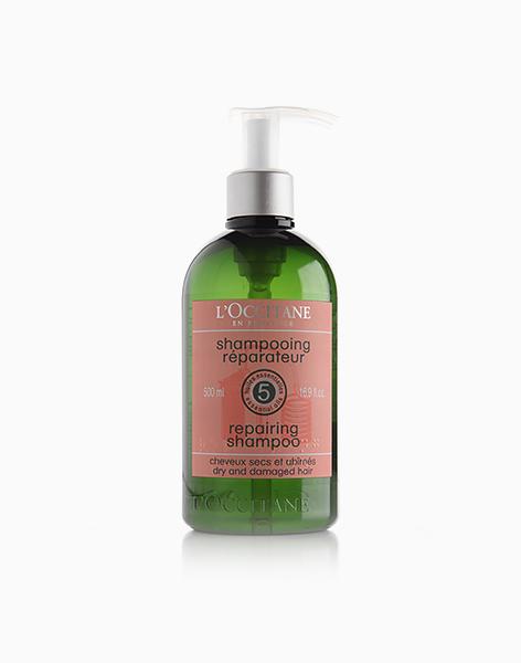 Repairing Shampoo (500ml) by L'Occitane