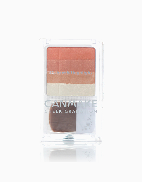 Cheek Gradation 3C Cheeks & 1 Highlights by Canmake | 02