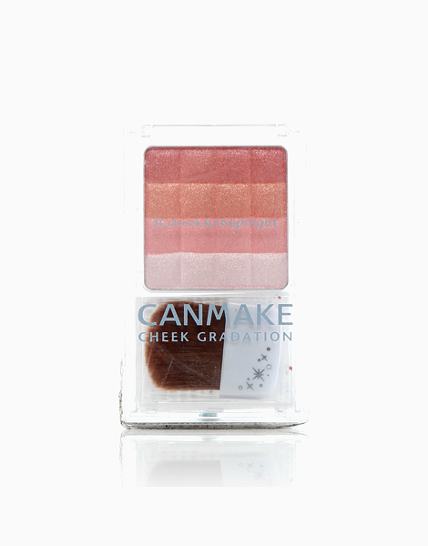 Cheek Gradation 3C Cheeks & 1 Highlights by Canmake | 05