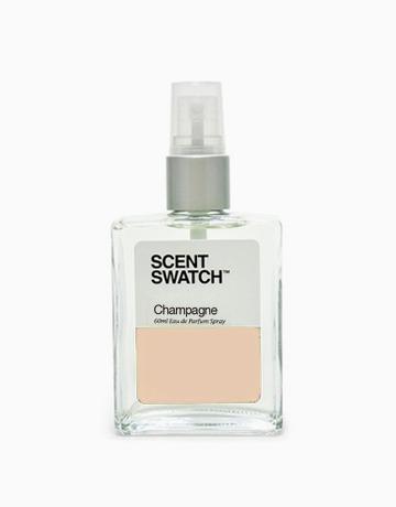 Champagne Eau de Parfum by Scent Swatch