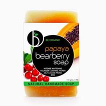 Papaya bearberry soap 2017