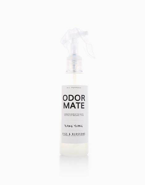 Odor Mate (200ml) by Figs & Blossoms | Ylang Ylang