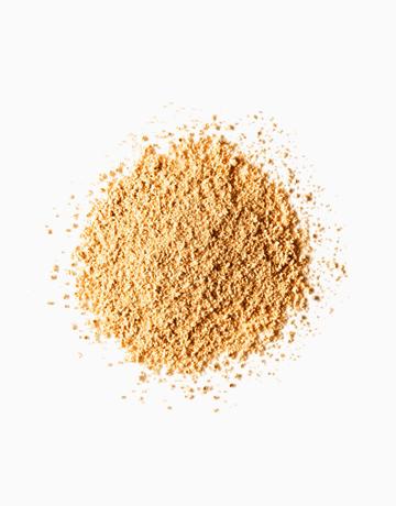 FS Loose Powder by FS Features & Shades | Medium