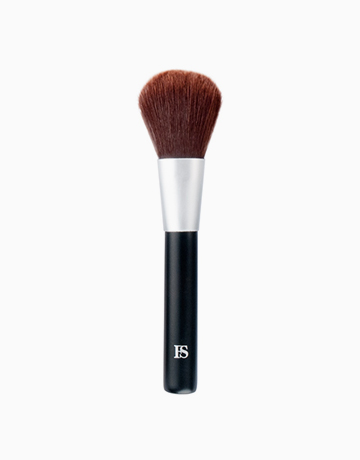 FS Powder Brush by FS Features & Shades