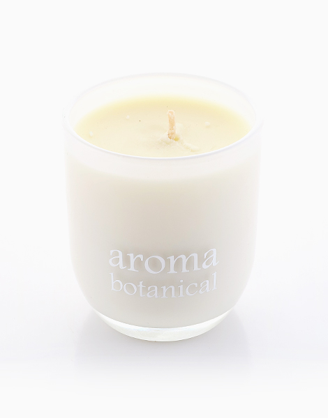 1-Wick Candle by Aromabotanical Philippines |