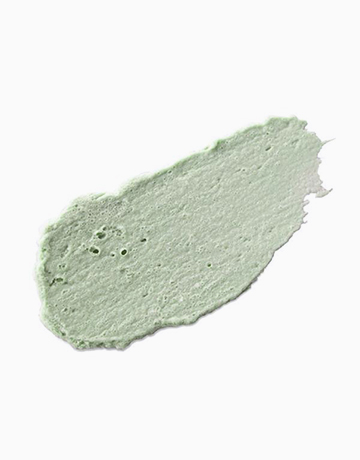 Canadian Clay Pore Mask + Brush by Neogen