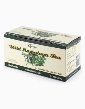 Wild Ampalaya Tea (30 Teabags) by Carica