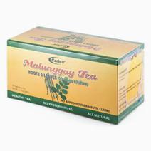 Carica malunggay tea