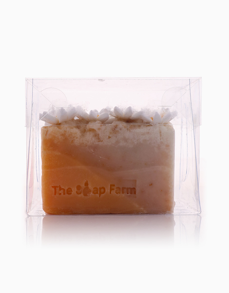 Daisies & Oatmeal Soaps by The Soap Farm