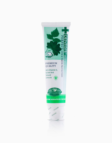 Nighttime Toothpaste (100g) by Dentiste'