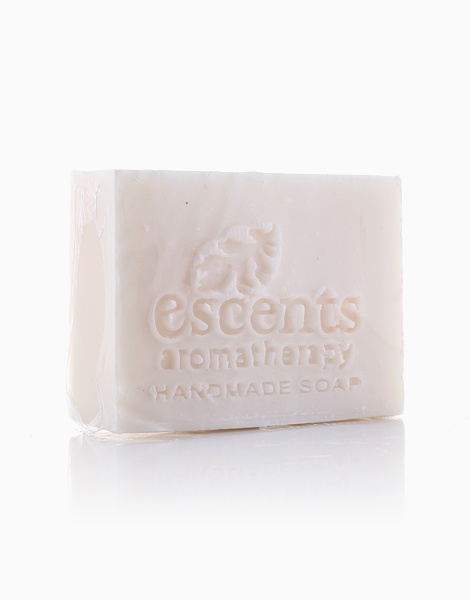 CoCoClean Laundry Bar Soap by Escents PH