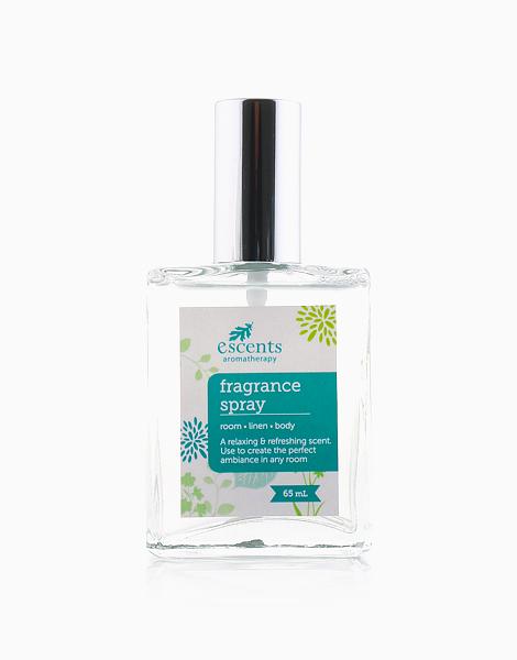 Fragrance Spray (65ml) by Escents PH | Paradise