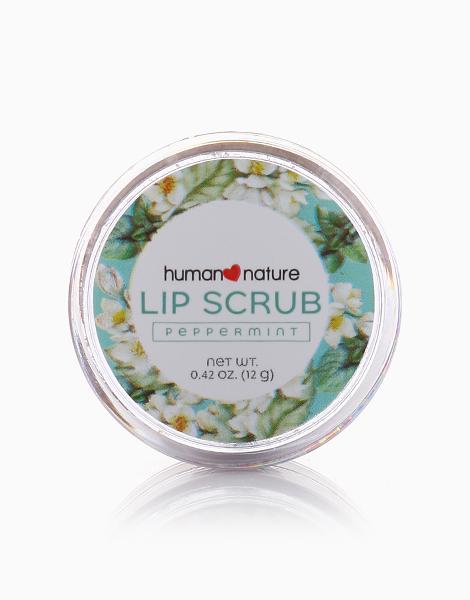 Natural Lip Scrub by Human Nature