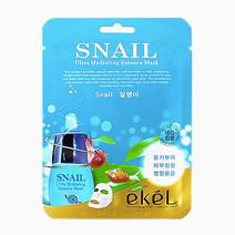 Snail Mask by Ekel