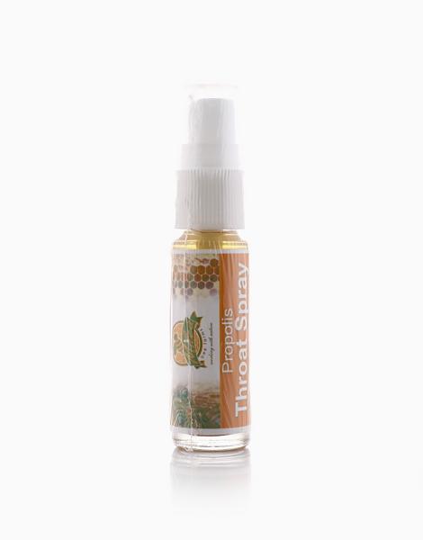 Propolis Throat Spray (12ml) by Milea