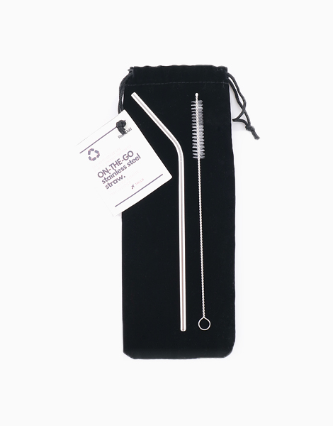 Reusable On-the-Go Stainless Steel Straw Set by TRVLR | Silver