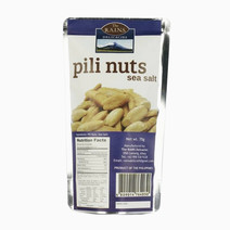 Rains delicacies pili nuts %28sea salt%29
