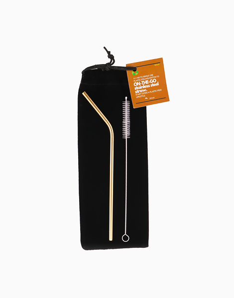 Reusable On-the-Go Stainless Steel Straw Set by TRVLR | Gold